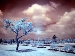 http://www.fotografer.net/isi/artikel/lihat.php?id=77